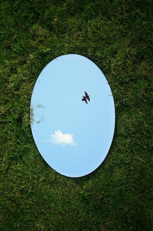Specchio e riflesso